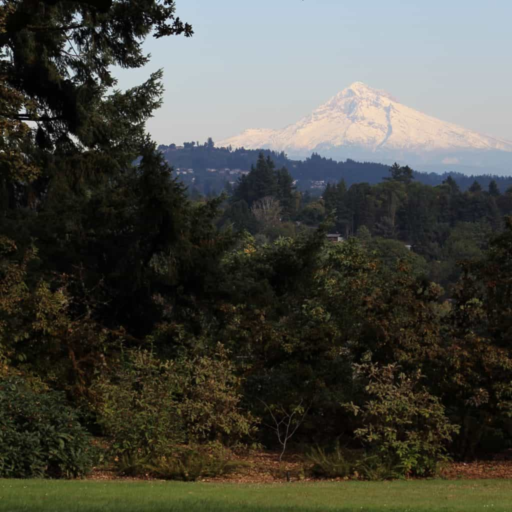 Looking at Mt. Hood from the lawn of the Bishop's Close, office of the Diocese of Oregon